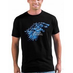 Camiseta Winter is Incoming, Juego de tronos