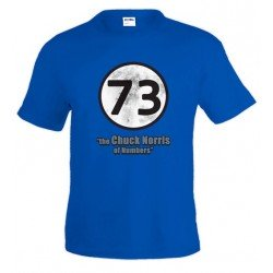 Camiseta Sheldon 73 - the Chuck Norris of Numbers